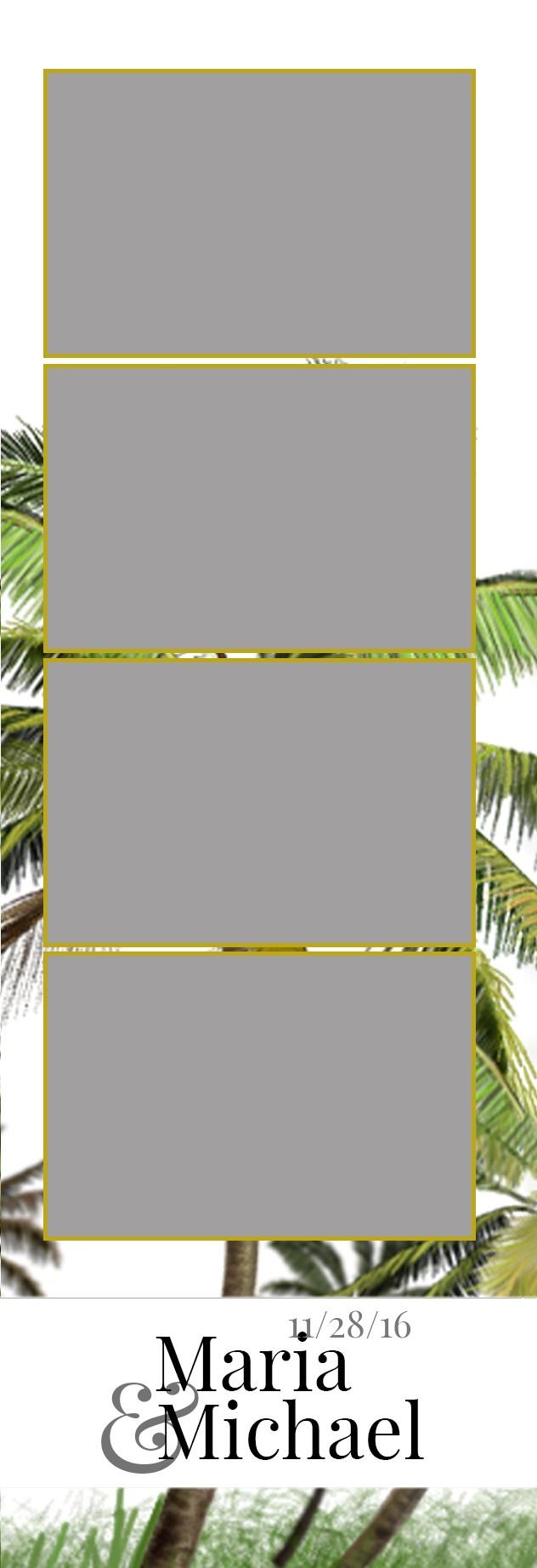 Breezy palms